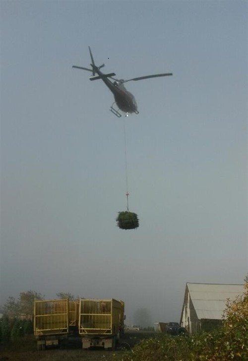 Helicopter loading Trucks